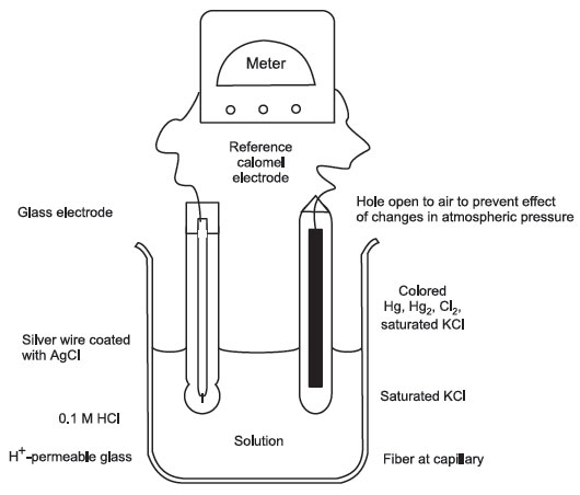 Ph Meter Tools And Techniques In Biological Studies