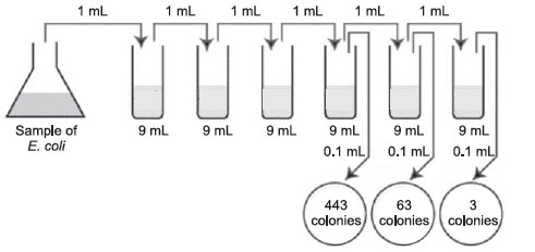 total count method