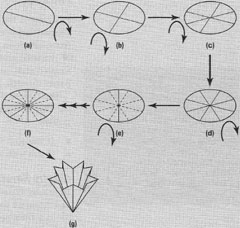 filtration basic laboratory procedures ii fundamental laboratory