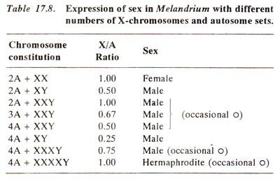 chromosomal sex determination in melandrium seed in Tamuert