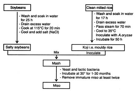 the production of rice biology essay In looking towards the future, scientists are working on a technique to maximize year-round production of the crop on a given plot of land in order to increase yields for a rice eating populous (xxxxx).
