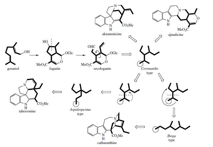 Terpenoid Indole Alkaloids Alkaloids From Plants