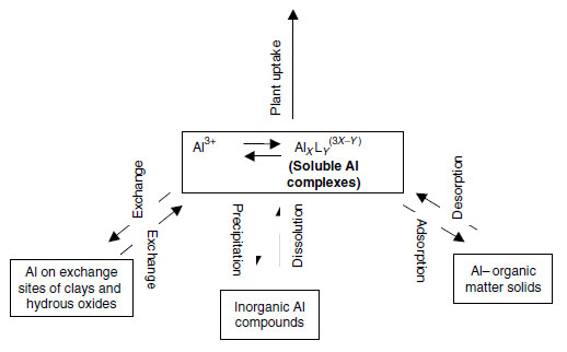 Processes controlling forms, solubility, and availability of Al in soils