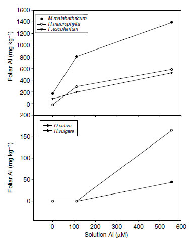 The pattern of increasing foliar aluminum concentrations with increasing solution aluminum differs in aluminum accumulator species (top) and aluminum excluder species