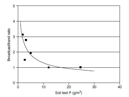 Relative efficiency of broadcast to banded phosphorus for sweet corn as affected by soil-test