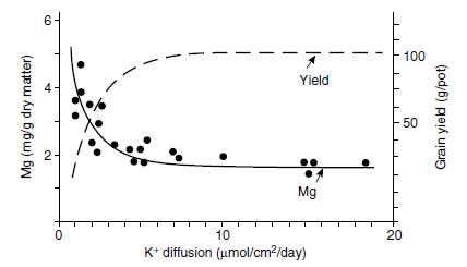 Effect of K+ availability expressed as K+ diffusion rate in soils on the Mg concentration in the aerial plant parts of oats at ear emergence and on grain yield