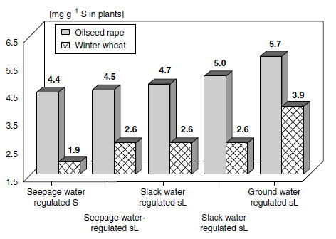 Total sulfur content of young leaves of oilseed rape and total aboveground material of winter wheat at stem extension in relation to soil hydrological parameters and soil texture