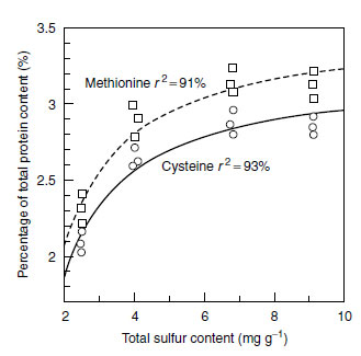 Relationship between the sulfur nutritional status of curly cabbage and the concentration of cysteine and methionine in the leaf protein