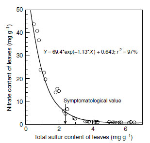 Nitrate concentrations in the dry matter of lettuce in relation to the sulfur nutritional status of the plants