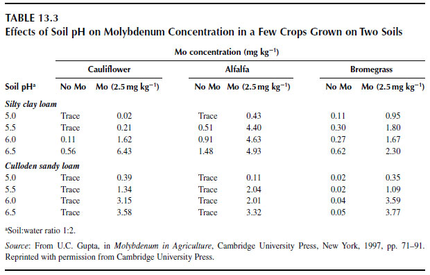 Effects of Soil pH on Molybdenum Concentration in a Few Crops Grown on Two Soils