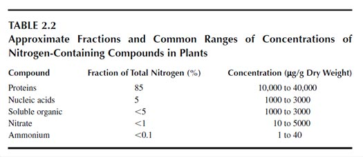 Approximate Fractions and Common Ranges of Concentrations of Nitrogen-Containing Compounds in Plants