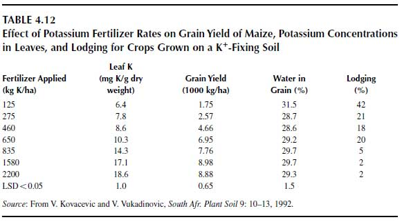 Effect of Potassium Fertilizer Rates on Grain Yield of Maize, Potassium Concentrations in Leaves, and Lodging for Crops Grown on a K+ -Fixing Soil