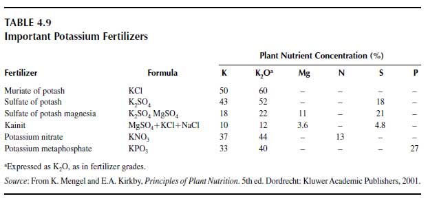 Important Potassium Fertilizers