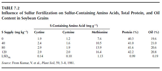Influence of Sulfur Fertilization on Sulfur-Containing Amino Acids, Total Protein, and Oil Content in Soybean Grains