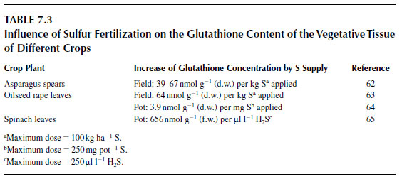 Influence of Sulfur Fertilization on the Glutathione Content of the Vegetative Tissue of Different Crops