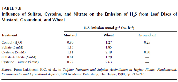 Influence of Sulfate, Cysteine, and Nitrate on the Emission of H2S from Leaf Discs of Mustard, Groundnut, and Wheat