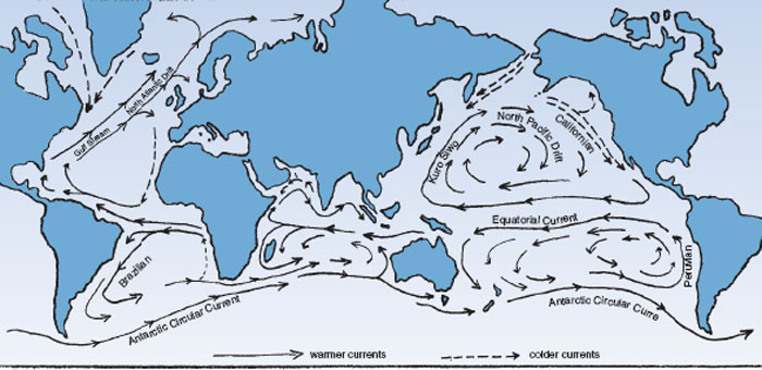 Global sea and wind movements . Warmer and colder water currents set in motion by the wind