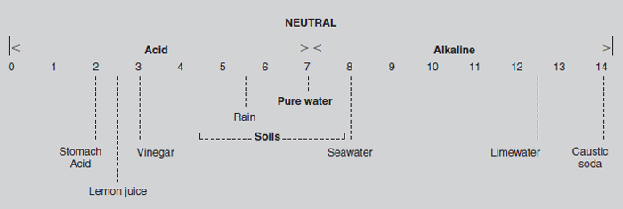 Figure 20.2 The pH scale