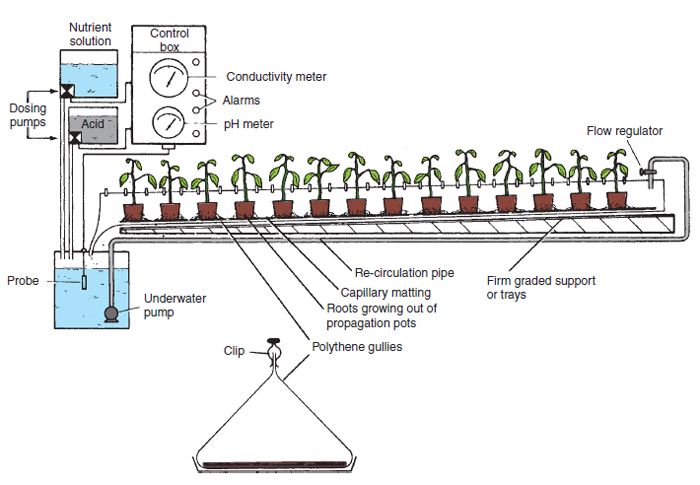 Figure 22.5 Nutrient film technique layout. The nutrient solution is pumped up to the top of the gullies. The solution passes down the gullies in a thin film and is returned to the catchment tank. The pH and nutrient levels in the catchment tank are monitored and adjusted as appropriate.