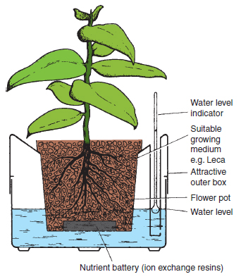 Figure 22.8 Plant pots with water reserves. Plants grown in a variety of growing media can be fitted with reservoirs that supply water by capillarity. A water level indicator is frequently incorporated and in some systems the nutrients are supplied from ion exchange resins. While this system can be used for any pot size it is particularly attractive in large displays