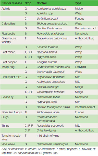 Table 16.1 Biological control organisms reared commercially for use in horticulture